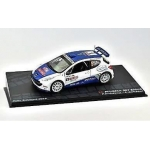 1:43 Peugeot 207 S2000 P.Andreucci Rally San Remo 2010